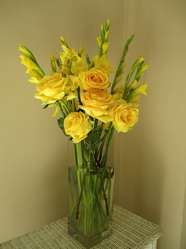 Fwd: ecuador-roses