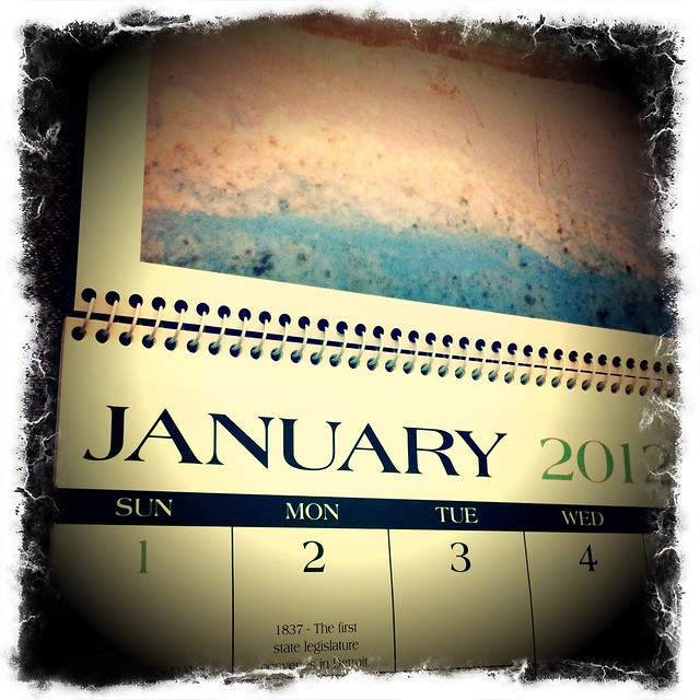Travel Calendar by flickr user danmoyle