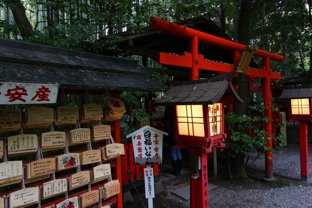 Kyoto Arashiyama tourist guide (24)