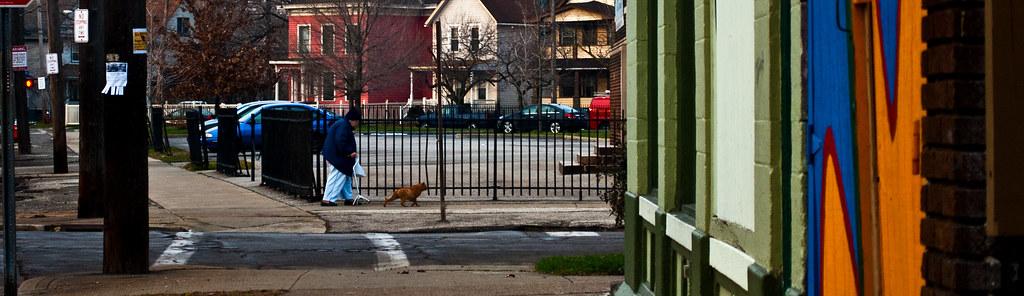 365-190 Cat Walk
