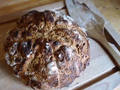 Selfmade rye/spelt bread