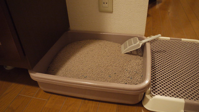 猫の砂交換