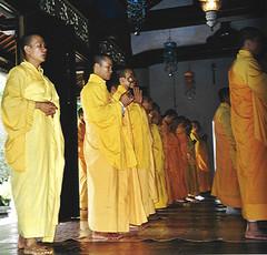 temple, yellow, priest, monk,