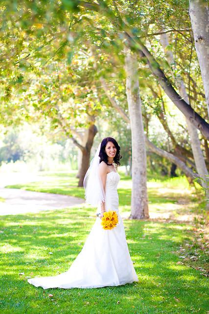 Weddings 2011 2-18