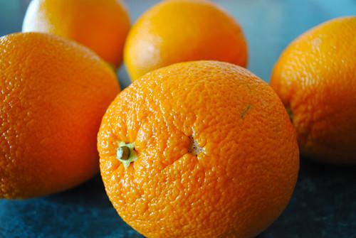 1-16-12 Sunny Oranges