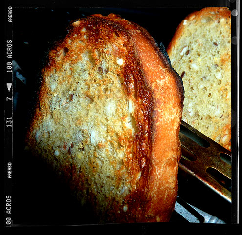 Seed & grain white bread