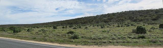 Escarpment on the Roe Plain along Eyre Highway to Madura WA