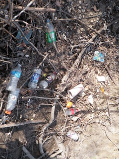 Trash and Debris in the Merritt Blvd. Section of Bread & Cheese Creek; area targeted for our 4/14/12 Cleanup.