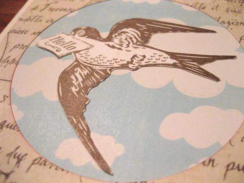 Bronze letterbird closeup