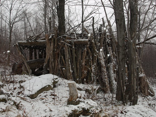 creepy cabin