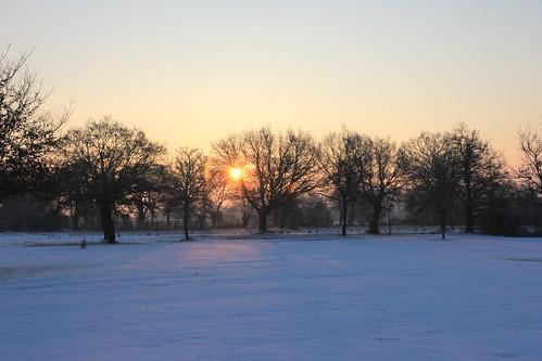 IMG_4881_sous la neige