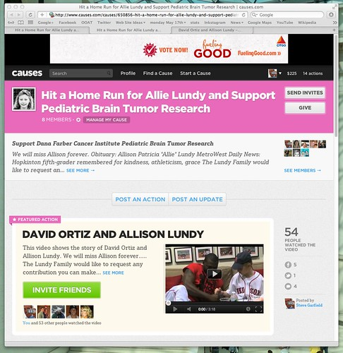 Hit a Home Run for Allie Lundy and Support Pediatric Brain Tumor Research | causes.com by stevegarfield