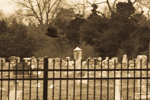 cemetery eerie arkansas crow