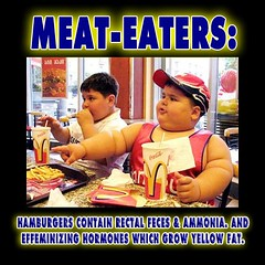 Diet food, Meat-Eaters Infant Formula of McDonalds Fast Food Beef Fat Leads to Obese Kids M…