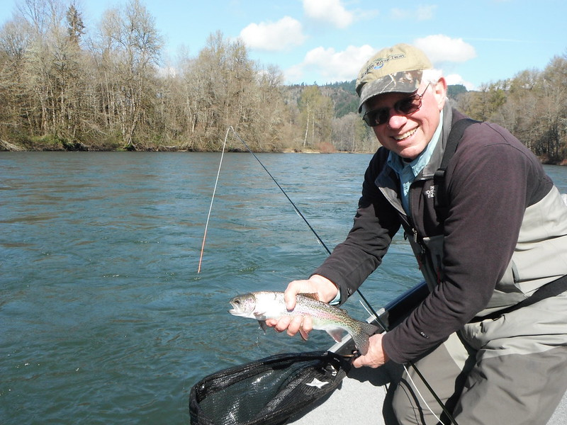lower mckenzie river trout fishing report the caddis fly