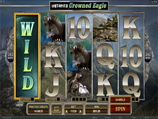 Untamed Crowned Eagle Collect a Wild Bonus