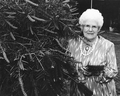 Vi Harkness standing by the original Gawler Hybrid Bottlebrush tree cultivated jointly with her husband Laurie at their Railway Terrace home .