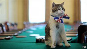 Лари с тържествена патриотична лентичка в деня на сватбата на принц Уилям