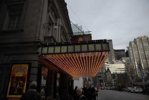 Showcase Lights