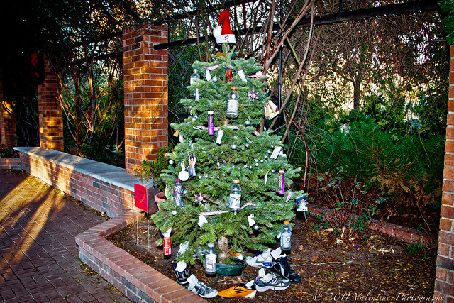 Physical fitness christmas tree flickr photo sharing
