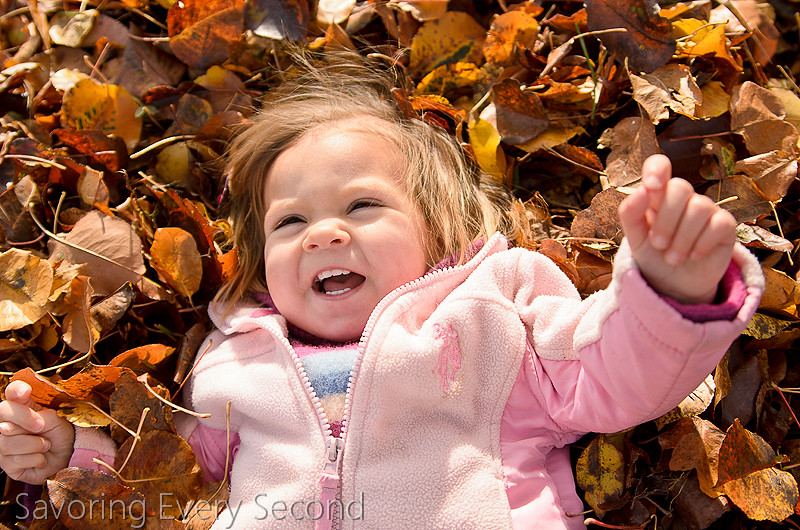 Fall Leaves21-Edit.jpg