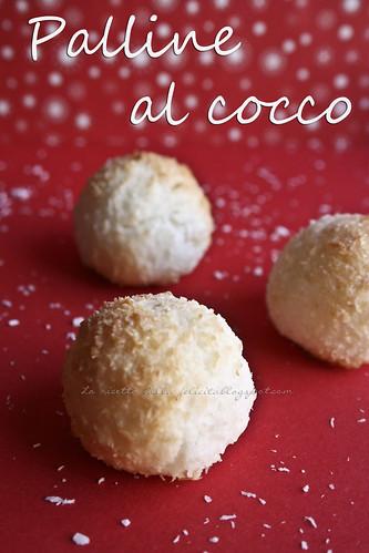 cocco b