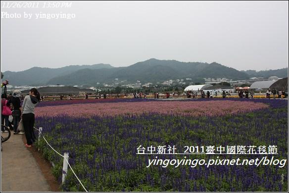 2011臺中國際花毯節20111126_I2135
