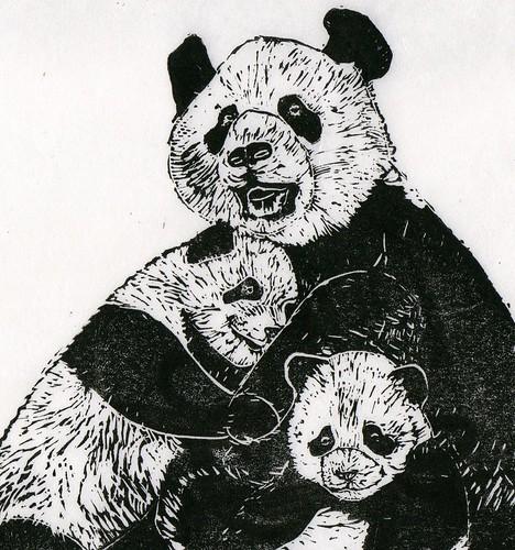 Pandas - detail