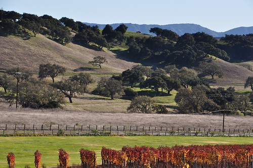 Santa Barbara Wine Country Vacations