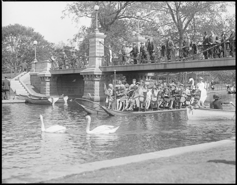 swan boats, boston, massachusetts, suspension bridge, swans, lagoon, boston public garden