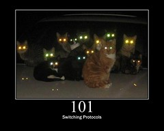 101 - Switching Protocols