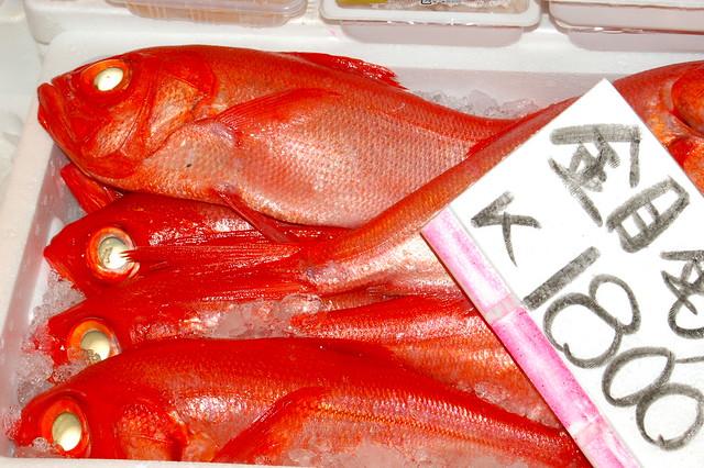 Tsukiji Fish Market_4