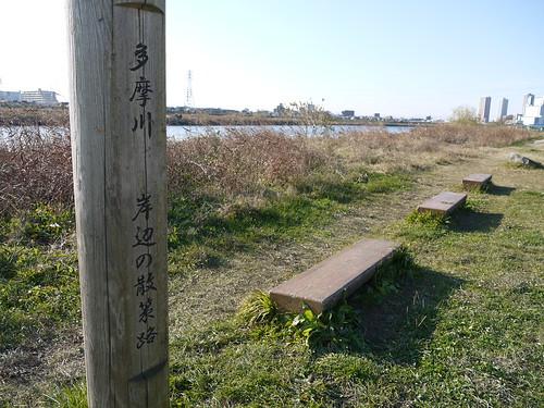 岸辺の散策路