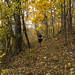 10-26-11: Lightfoot in Shenandoah