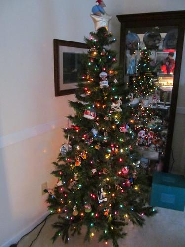 Kern Tree 2011