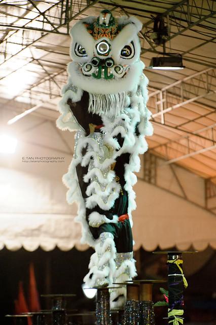 Lion Dance - 003