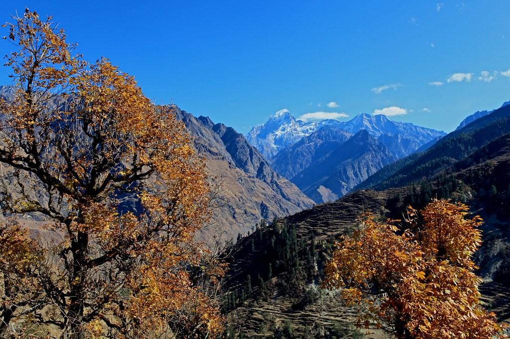 Fall Colors and Dunagiri