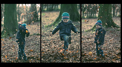 Playing in the leaves, multiple shot