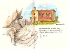 05-12-11a by Anita Davies