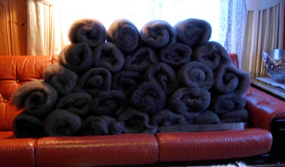 Polwarth-carded-2