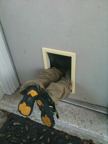 12-27-12 01 cat door