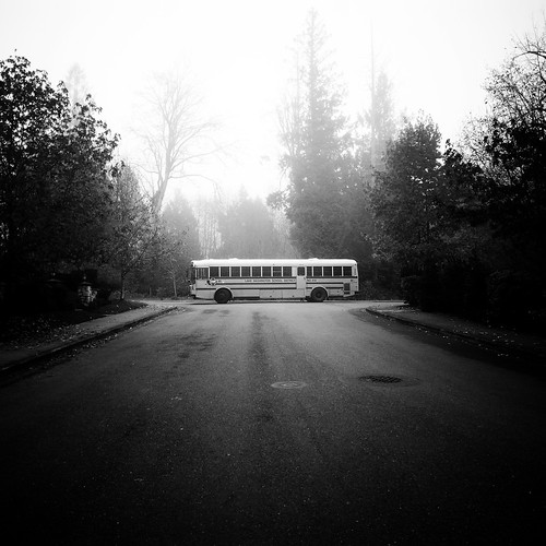 road seattle trees bw bus fog square blackwhite washington december foggy symmetry squareformat schoolbus washingtonstate iv ricoh sammamish carre 2011 grd bwsquare blackandwhitesquare ricohgrdiv grdiv