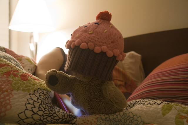 365.146 Cupcake Bear