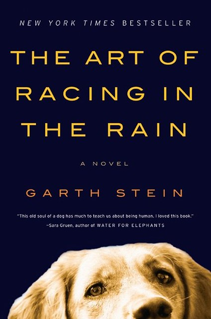 art-of-racing-in-the-rain