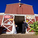 Johnny & Sarah Wedding