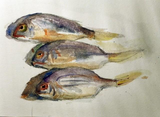 Fish, Panasonic DMC-FS14