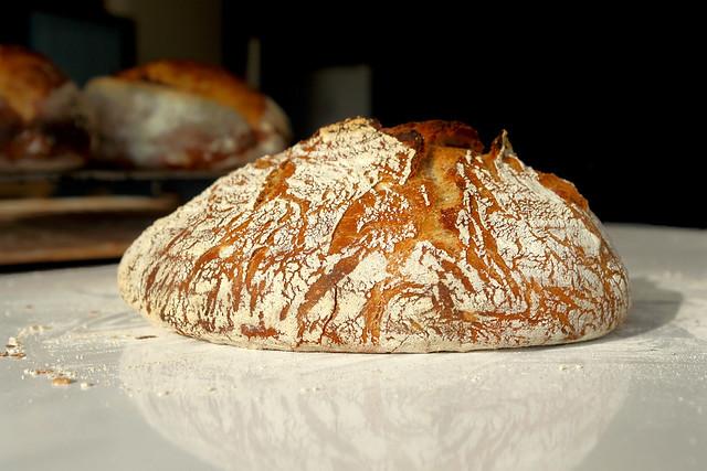 08 coaja no knead