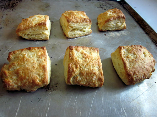 Daring Bakers January: Scones