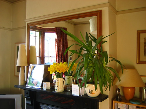 Daffs on the mantelpiece