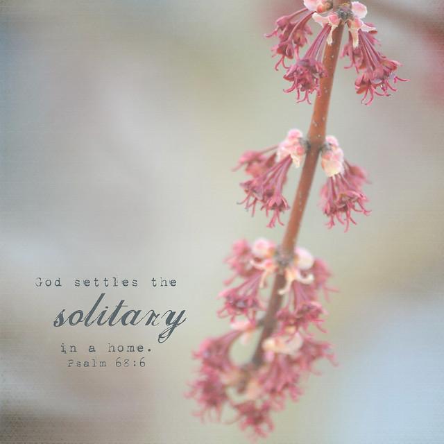 solitude1 verse copy